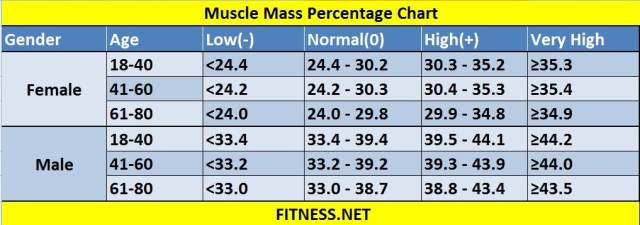 muscle-mass-percentage-chart