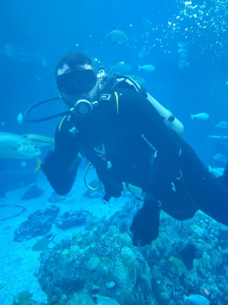 A diver in the Living Seas aquarium.