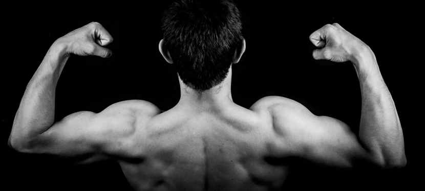 How Do Your Arms Stack Up to Other GymBros?